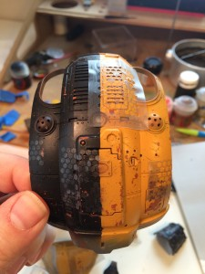 Masking on top carapace.
