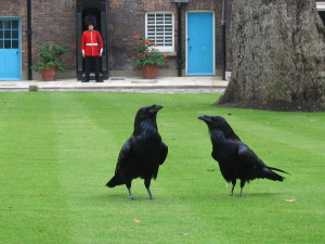 It would seem some Games Workshop designers recently went on holiday to the Tower of London, and fell in love with the ravens.